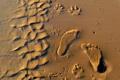 Картинка песок, пляж, следы
