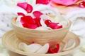 Картинка роза, чашка, лепестки, блюдце