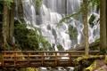 Картинка деревья, мост, камни, гора, водапад