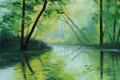 Картинка рисунок, арт, artsaus, forest green