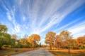 Картинка листья, облака, осень, деревья, дорога, небо