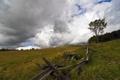 Картинка поле, пейзаж, природа, забор