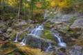 Картинка осень, лес, деревья, скала, река, водопад, поток