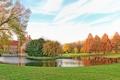Картинка осень, трава, деревья, пруд, парк, Германия, лужайки