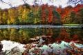 Картинка осень, деревья, река, Red and Yellow