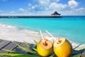 Картинка море, пляж, лето, beach, sea, коктейли, paradise