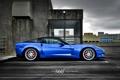 Картинка Z06, Corvette, Mesh Eight, Blue Devil