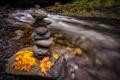 Картинка осень, листья, река, камни