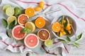 Картинка апельсины, лимоны, лаймы, Anna Verdina, цитрусовые