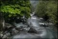 Картинка лес, лето, природа, река, камни