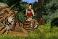 Картинка трава, хищники, фотоаппарат, тигры, nikon, Lara Croft, Tomb raider