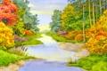 Картинка лес, лето, небо, цветы, камыши, краски, речка