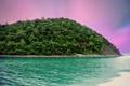 Картинка море, деревья, остров, sea, island trees