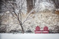 Картинка зима, город, парк