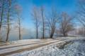 Картинка дорога, снег, деревья, озеро