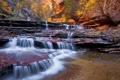 Картинка лес, вода, деревья, река, течение, водопады, русло