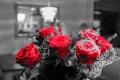Картинка розы, влюбленные, букет, праздник, лепестки, бутон