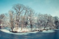 Картинка зима, река, деревья
