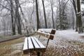 Картинка зима, осень, снег, деревья, скамейка, туман, пруд