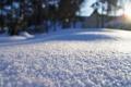 Картинка снег, свет, Марина Пургина, фото