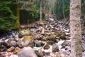 Картинка камни, осень, река, поток, лес, кавказ, приэльбрусье
