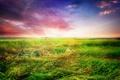 Картинка поле, небо, трава, закат, sky, landscape, nature