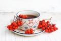Картинка осень, ягоды, чай, чашка, блюдце, рябина