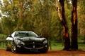 Картинка природа, Maserati, Granturismo