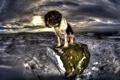 Картинка зима, взгляд, ночь, друг, собака