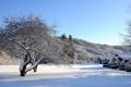 Картинка зима, небо, снег, деревья, дома, холм