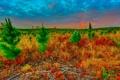 Картинка небо, трава, облака, закат, степь, растения, долина