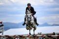 Картинка конь, прыжок, спорт
