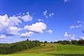 Картинка Небо, Природа, Облака, Фото, Поле, Трава, Деревья