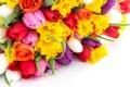 Картинка букет, тюльпаны, цветы