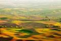 Картинка ландшафт, вид, поля, Природа
