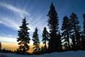 Картинка закат, лес, пейзаж, фото, вечер, обои, природа