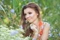 Картинка поле, взгляд, девушка, цветы, макияж, шатенка