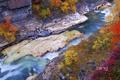 Картинка осень, листья, река, скалы, Швеция, Sweden, деревце