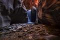 Картинка вода, ручей, камни, скалы, поток, лестница, каньон
