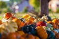 Картинка осень, макро, урожай, тыквы, овощи