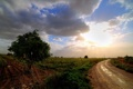 Картинка пейзаж, поле, дорога
