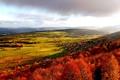 Картинка осень, небо, облака, деревья, город, холмы, дома