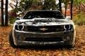 Картинка осень, листья, Chevrolet, зеркльный