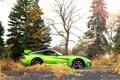 Картинка Viper, green, чёрные, black, Dodge, профиль, зелёный