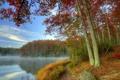 Картинка осень, вода, туман