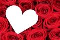 Картинка сердце, розы, красные, red, flowers, roses