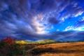 Картинка небо, трава, облака, горы, холмы, куст