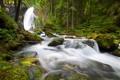 Картинка лес, деревья, река, камни, водопад, Germany, Berchtesgaden