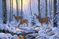 Картинка зима, лес, снег, деревья, ручей, арт, олени