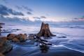 Картинка море, небо, облака, камни, скалы, вечер, отлив